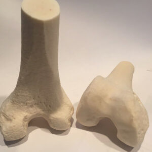 FibreTuff: Bone Replacement Filament 3D Printlife